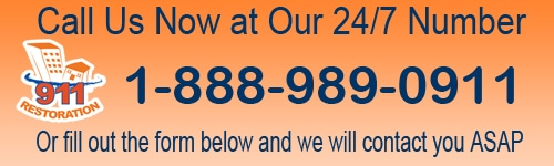 911 contact us