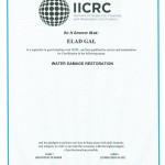 Elad Gal IICRC 2014
